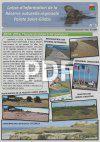 Newsletter 5 RNR PSG